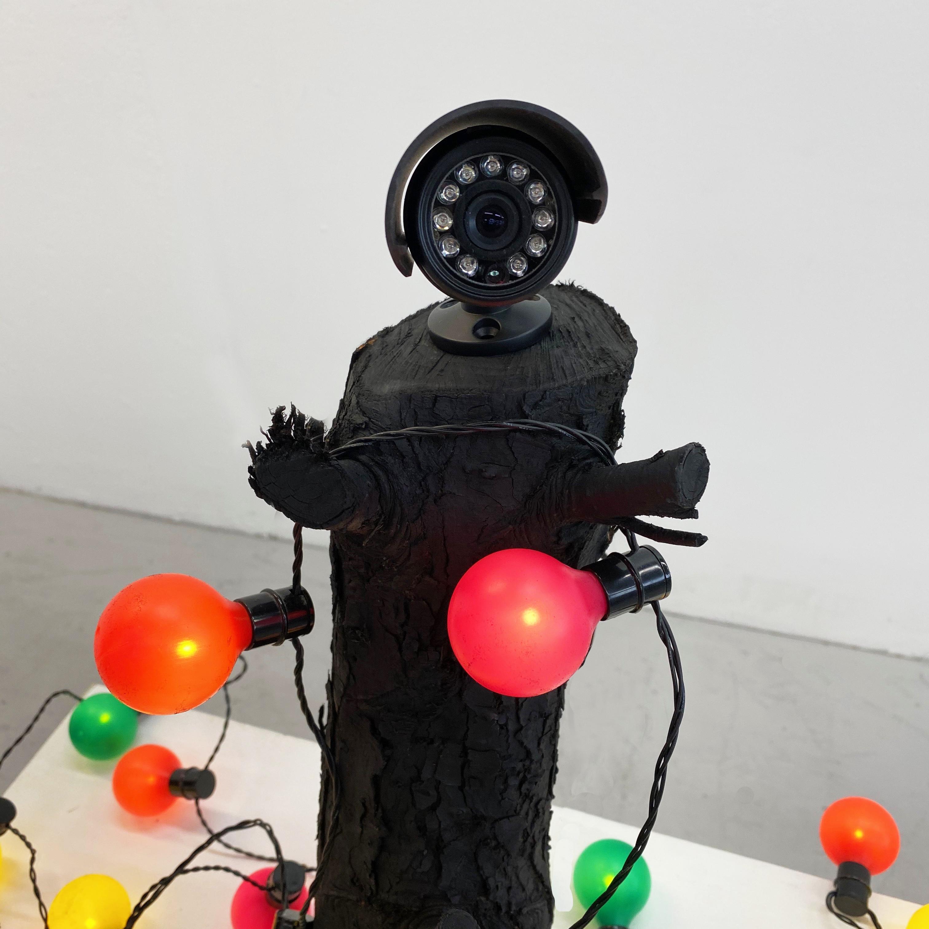 Watching. 2019. CCTV camera, log, festoon lights. Acid etch paint.