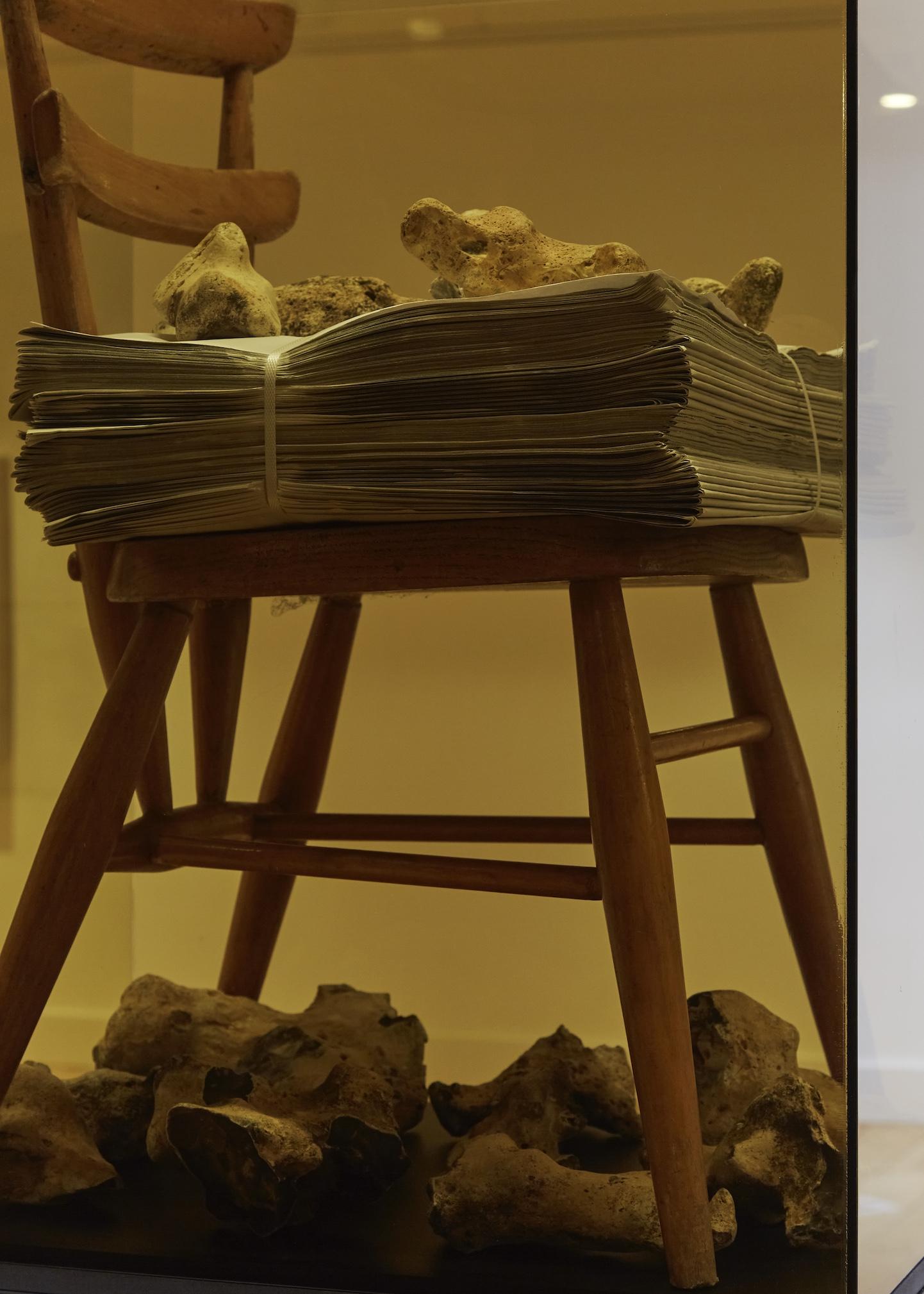 'Memory Storage' Mixed media assemblage and vitrine. Detail shot.