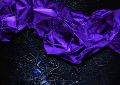 Untitled. (grounded ultraviolet) 2021 Archival print mounted to Dibond.